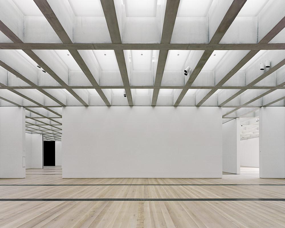 Saint Louis Art Museum Expansion Front Inc