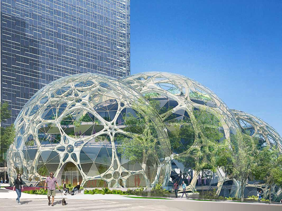 Forget Beanbag Chairs. Amazon Is Giving Its Workers Treehouses.