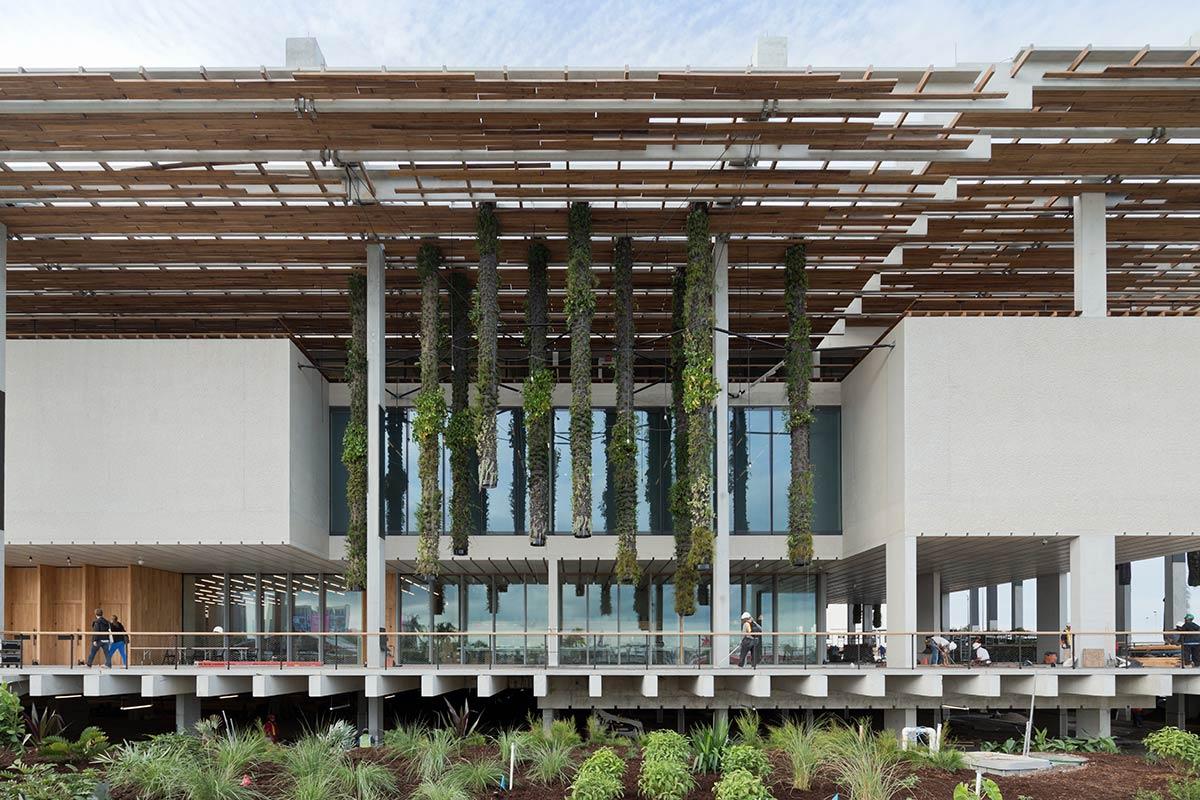 Grand Opening: Pérez Art Museum Miami